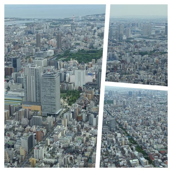 Skytree_collage1.jpg